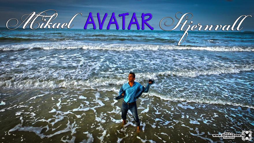 Artist Mikael Avatar